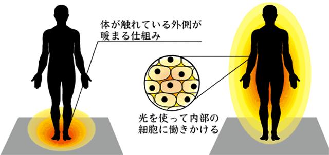 遠赤外線の効果