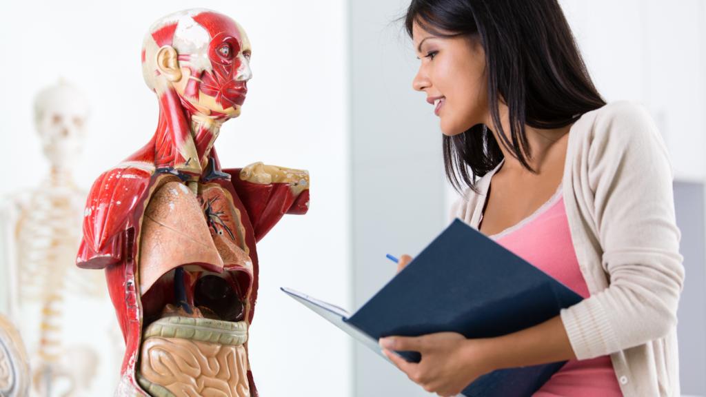 人体解剖図と医師